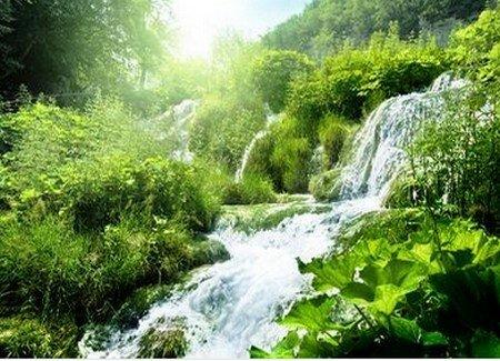 protection eau environnement écologie